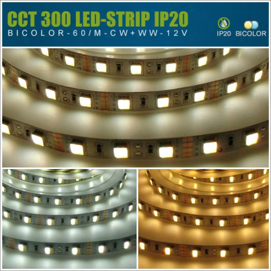 LED Streifen 12V SMD5050 60 LED/m - IP20 2in1 CCT